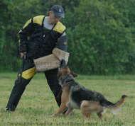 bite sleeve cover for schutzhund,police training