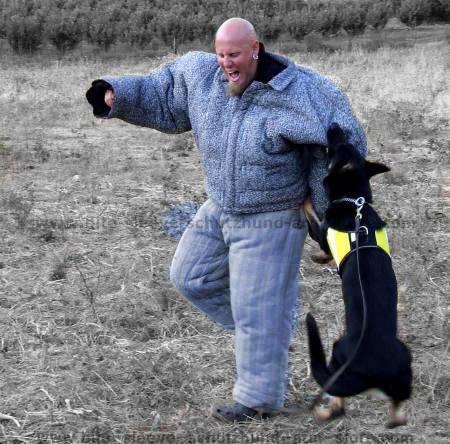 schutzhung training,police training,k9 training bite suit