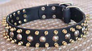 3 Rows with brass Leather Spikes and Studded Dog Collar