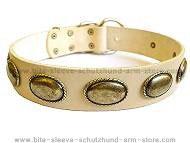 Retro Rulz - Gorgeous Vintage Dog Leather Collar - C103