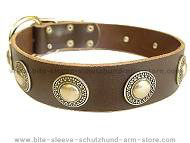 Leather Dog Collar with silver conchos